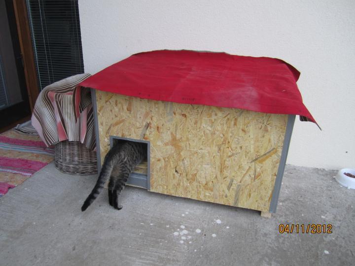 Bývame a dokončievame - No  neviem neviem, ci sa mi to bude pacit, idem si to este raz obzrieť :-D ( na strechu potrebujeme šindel este dať, takže  stara nafukovaka je provizorna ochrana pred daždom ) :-D