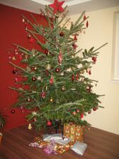 nase prve Vianoce na dome :)