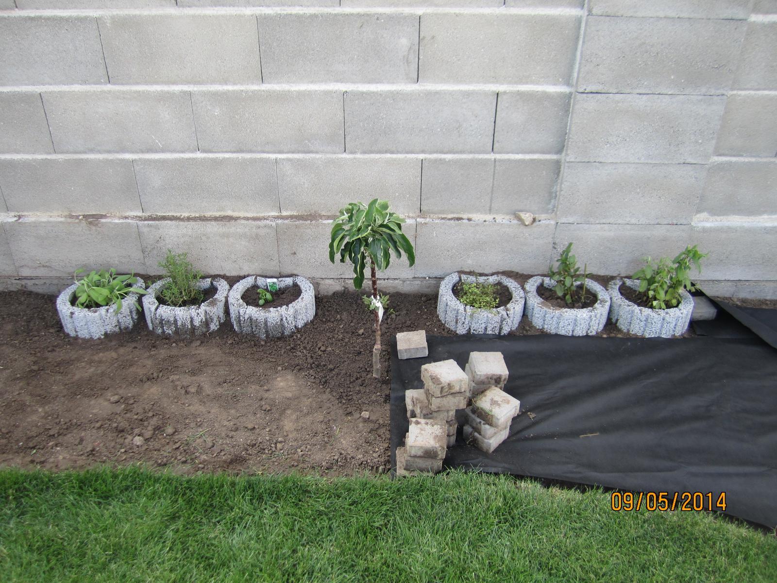 Bývame a dokončievame - Dnes sme kupili tvarnice a zasadili  bylinky ... tvarnice sme osadili do polovice hlbky do zeme, aby sa menej prehrievali...