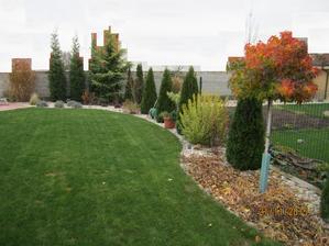 jesen v zahrade... o 2 tyzdne ... liquidambar ide krasne do cervena, dnes je  este cervensi :)