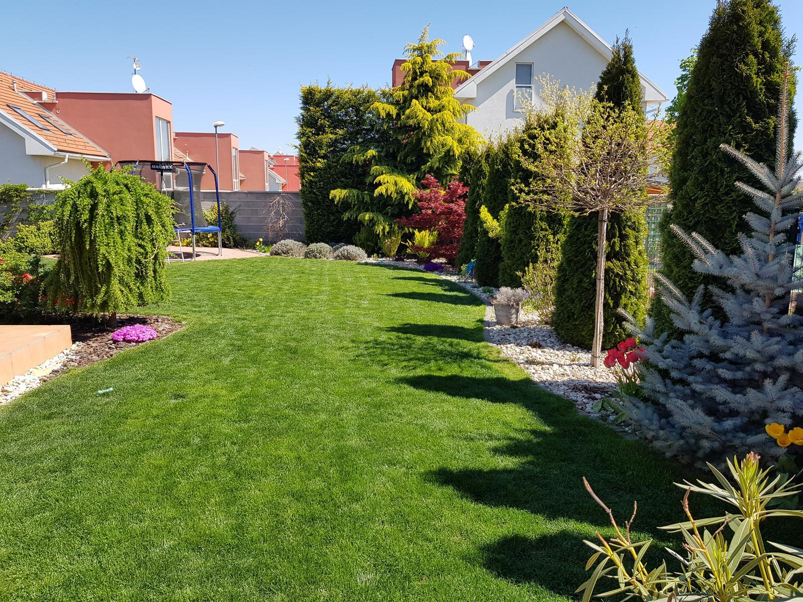 1 rok verzus 6ty rok nasej zahrady,ktoru som navrhovala ja a realizoval manzel - Obrázok č. 3