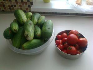 nasa uroda .. rajciny cherry + normalne,  kazdy druhy den plna miska.... a uhorky po par dni dažda, ked som ich nezbierala  taketo :( co s nimi? na zavaranie su uz velke :(  kvasaky nelubime ani neviem robit..  :(
