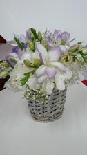 Květy už jsou trochu zvadlé, fotila jsem to až čtvrtý den :( , nestíhačka