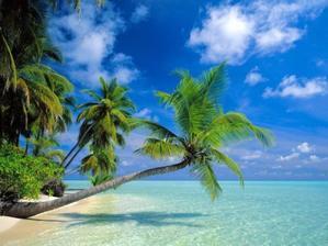 Svatebni cesta Maledivy  srpen 2010