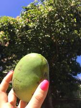..nebo radši Mango?..😋