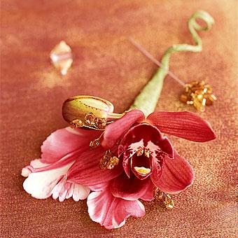 Horucka sobotnajsej noci 05.05.2007 - krasne pierko-orchidea