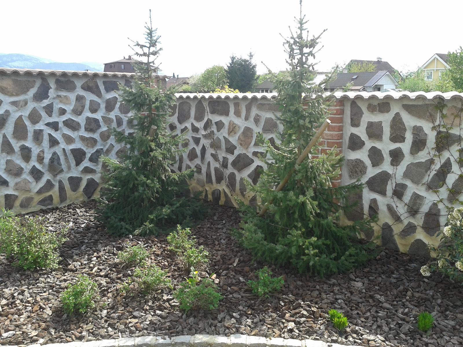 Exterier zahrada - Obrázok č. 18