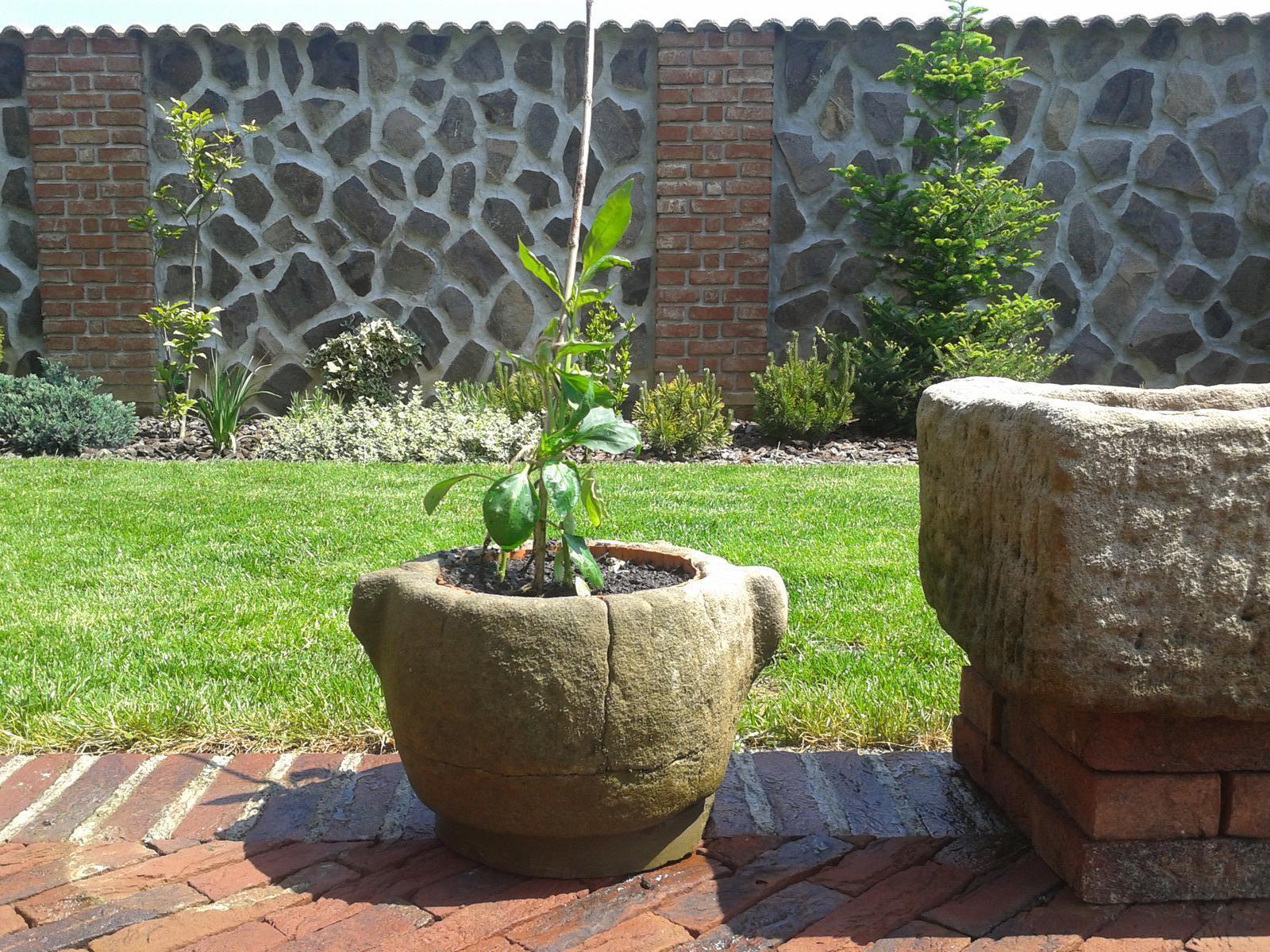 Exterier zahrada - Obrázok č. 35