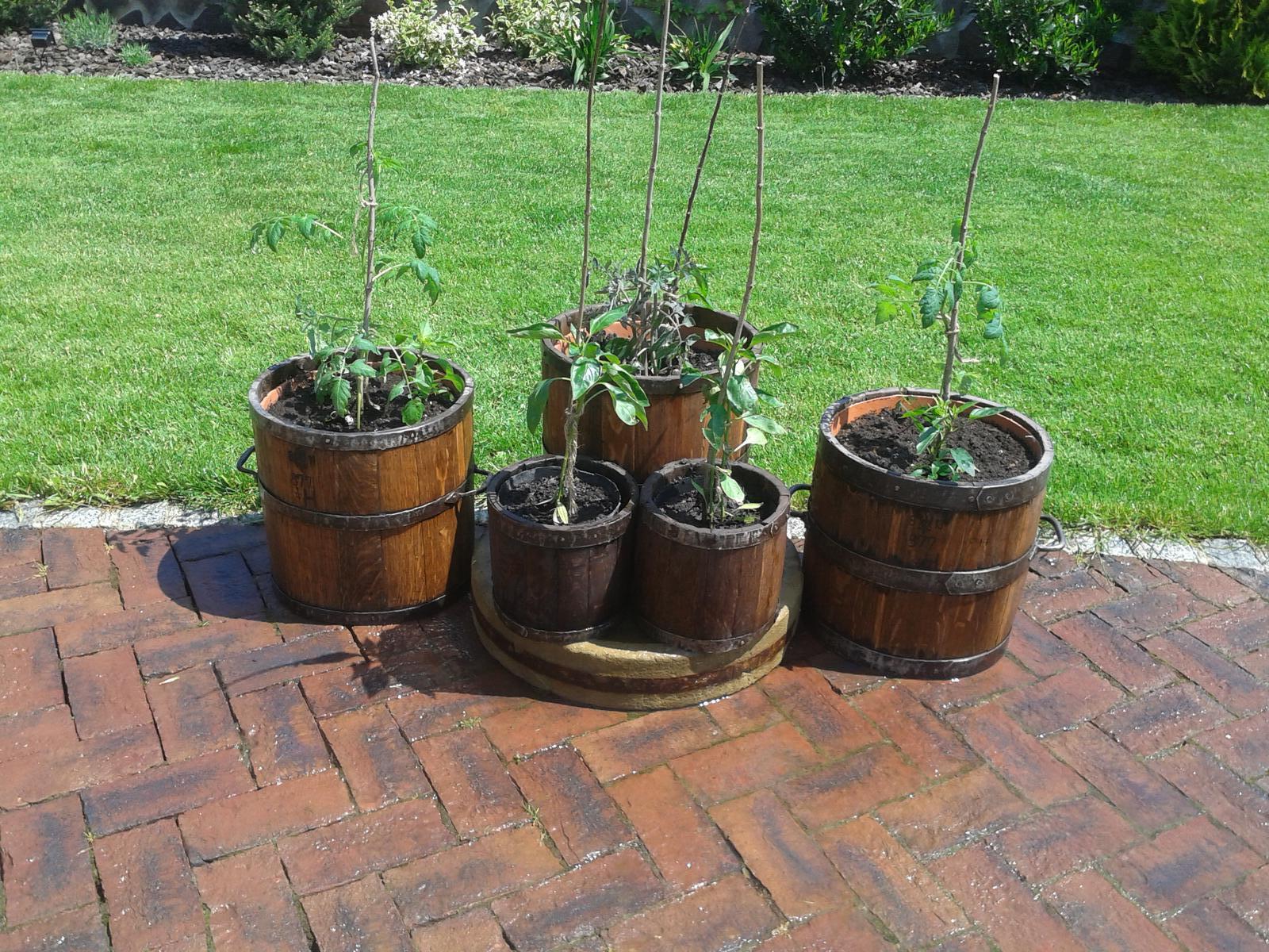 """Exterier zahrada - """"Zeleninová záhradka""""...zatiaľ"""
