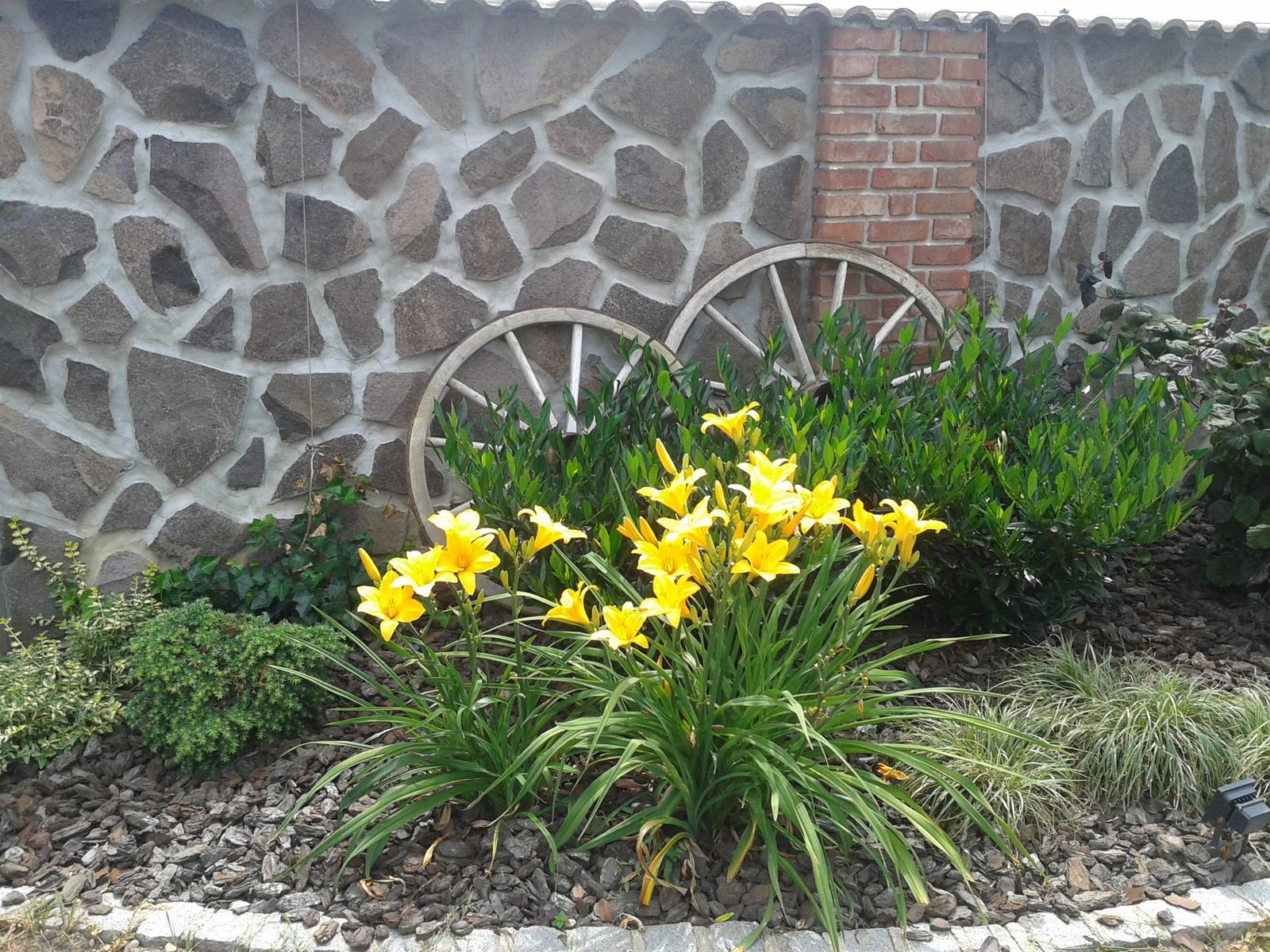 Exterier zahrada - Obrázok č. 54