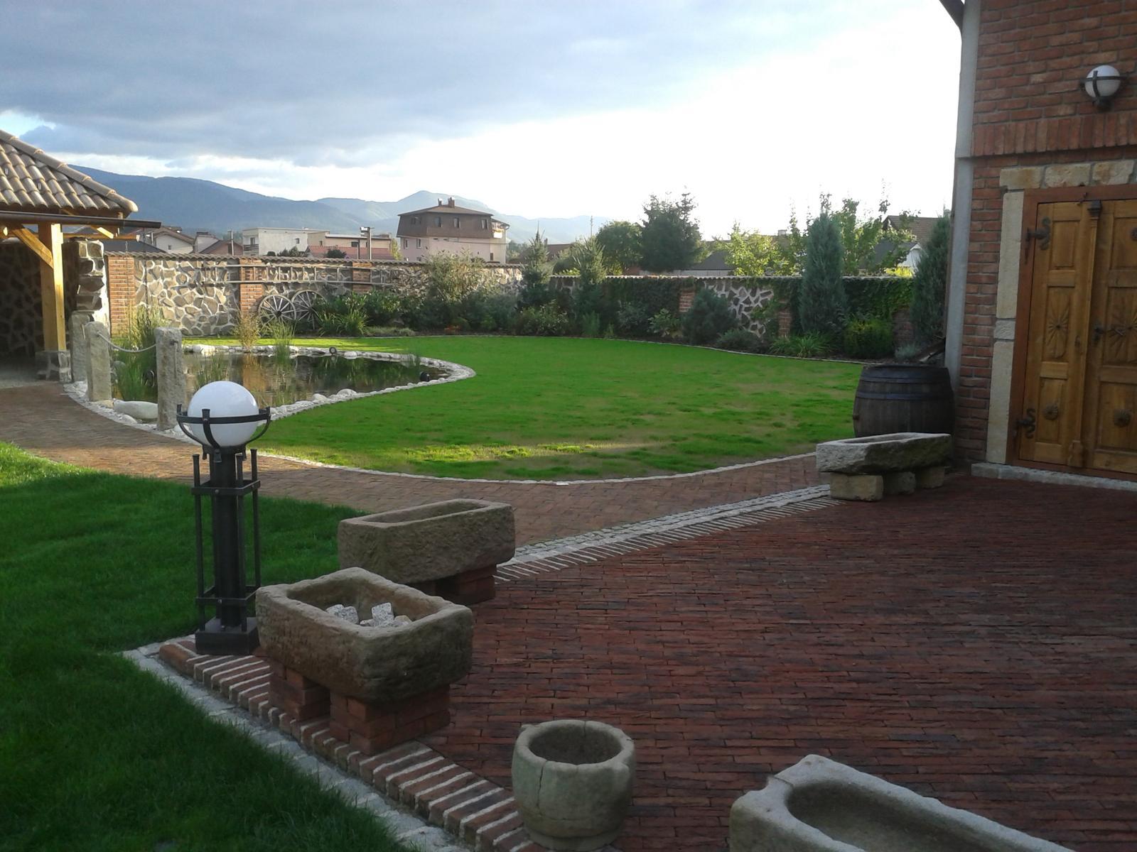 Exterier zahrada - Trávička po týždni od nasiatia...