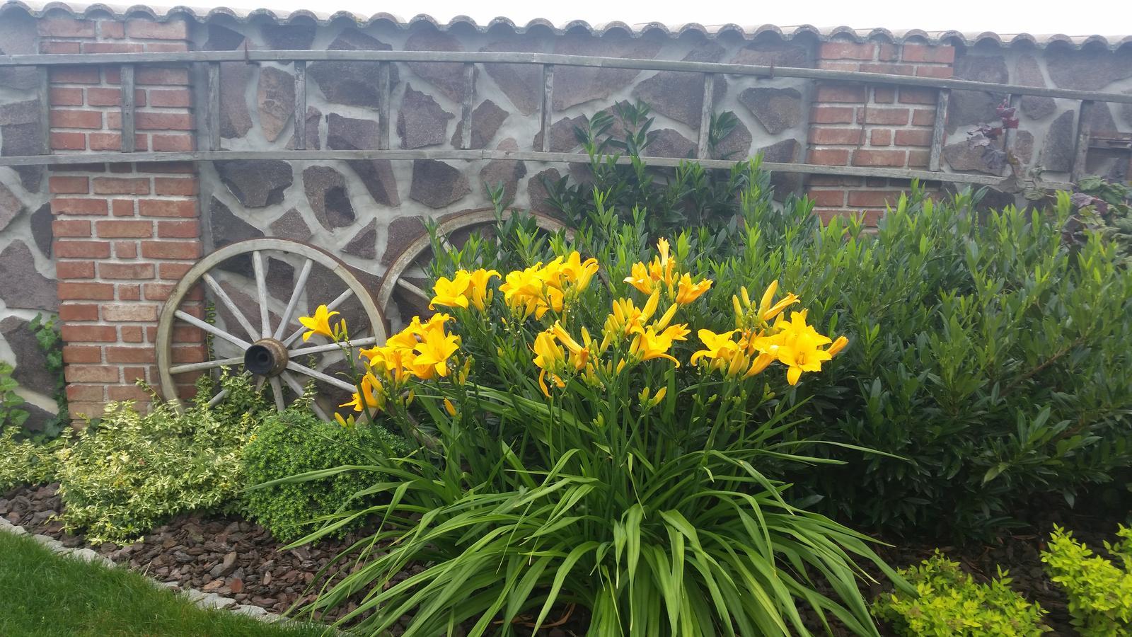 Exterier zahrada - ...foto presne po roku...☺