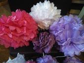 Pom poms fialové a lila,