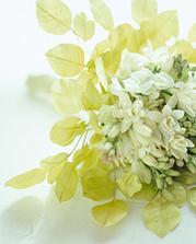 Nádherná... krásně by se hodila k našemu svatebnímu oznámení... :-)