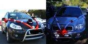 Takováto ozdoba bude na našich autech. Já teda ještě panenka ... :o)
