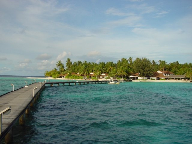 Daniela{{_AND_}}Roman - Maledivy