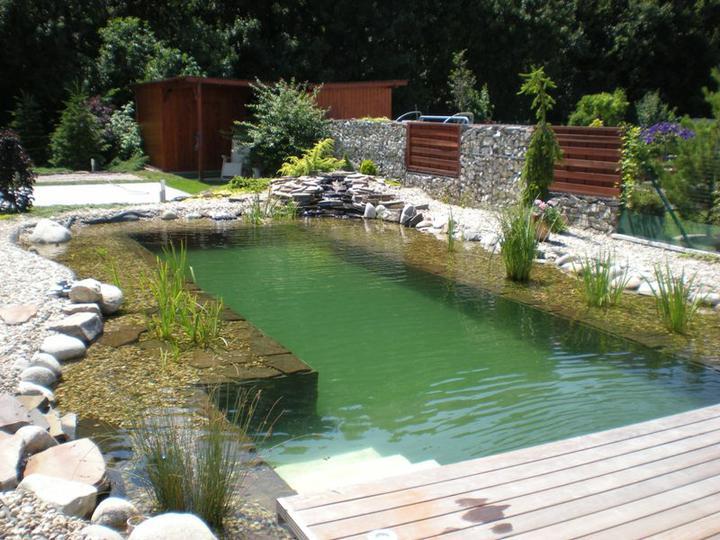 aquapond - Biojazierko Čierna Voda
