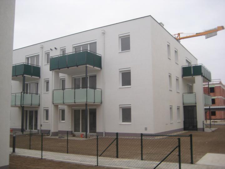 Kittsee Steinfeldsiedlung 11.11.2011 - Obrázok č. 30