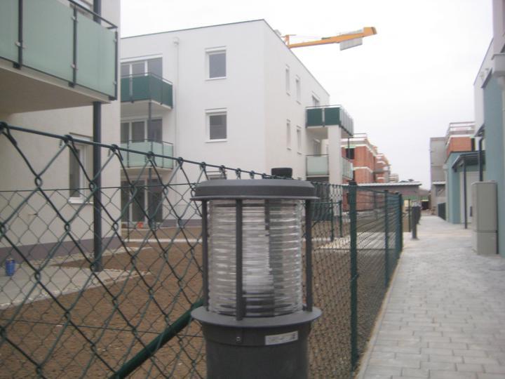 Kittsee Steinfeldsiedlung 11.11.2011 - Obrázok č. 31