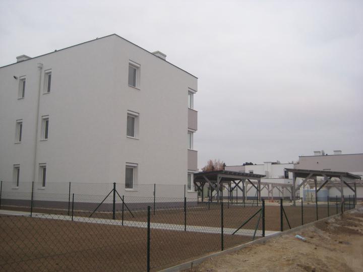 Kittsee Steinfeldsiedlung 11.11.2011 - Obrázok č. 33