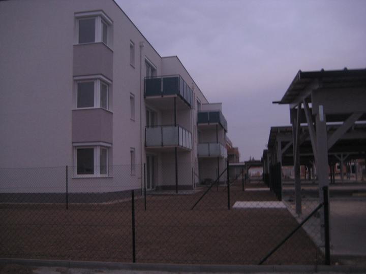 Kittsee Steinfeldsiedlung 11.11.2011 - Obrázok č. 72