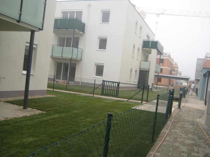 Kittsee Steinfeldsiedlung 17.11.2011 - Obrázok č. 2