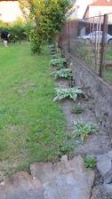 začínám se roztahovat i na druhou stranu plotu :-)