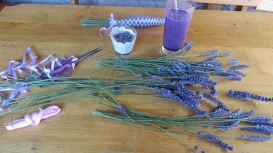 jedu na fialové vlně - levandule a borůvkový koktejl