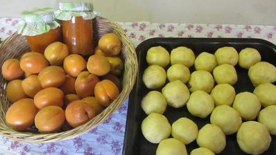 meruňková marmeláda a knedlíky