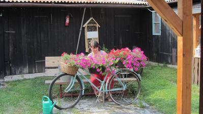 letošní rozkvetlé kolo