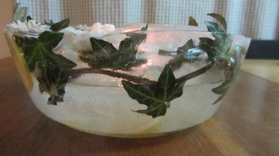 miska z ledu
