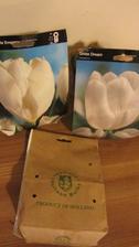 dnes se nám vrátil zájezd z Holandska a spolu se spokojenými klienty dorazily i cibulky tulipánů. Už to mám vymyšlené jak příští jaro pokvetou mezi modřenci a čemeřicí.