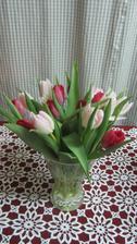 začíná mé oblíbené tulipánové období
