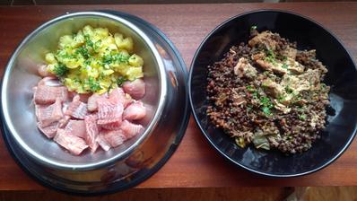 Náš dnešní oběd. Psí miska - mořský vlk, brambory s petrželkou, olivový olej. Moje miska - losos a čočkové ragú. Hafan sežral jen brambory, já jsem svou porci poslušně snědla celou :-)