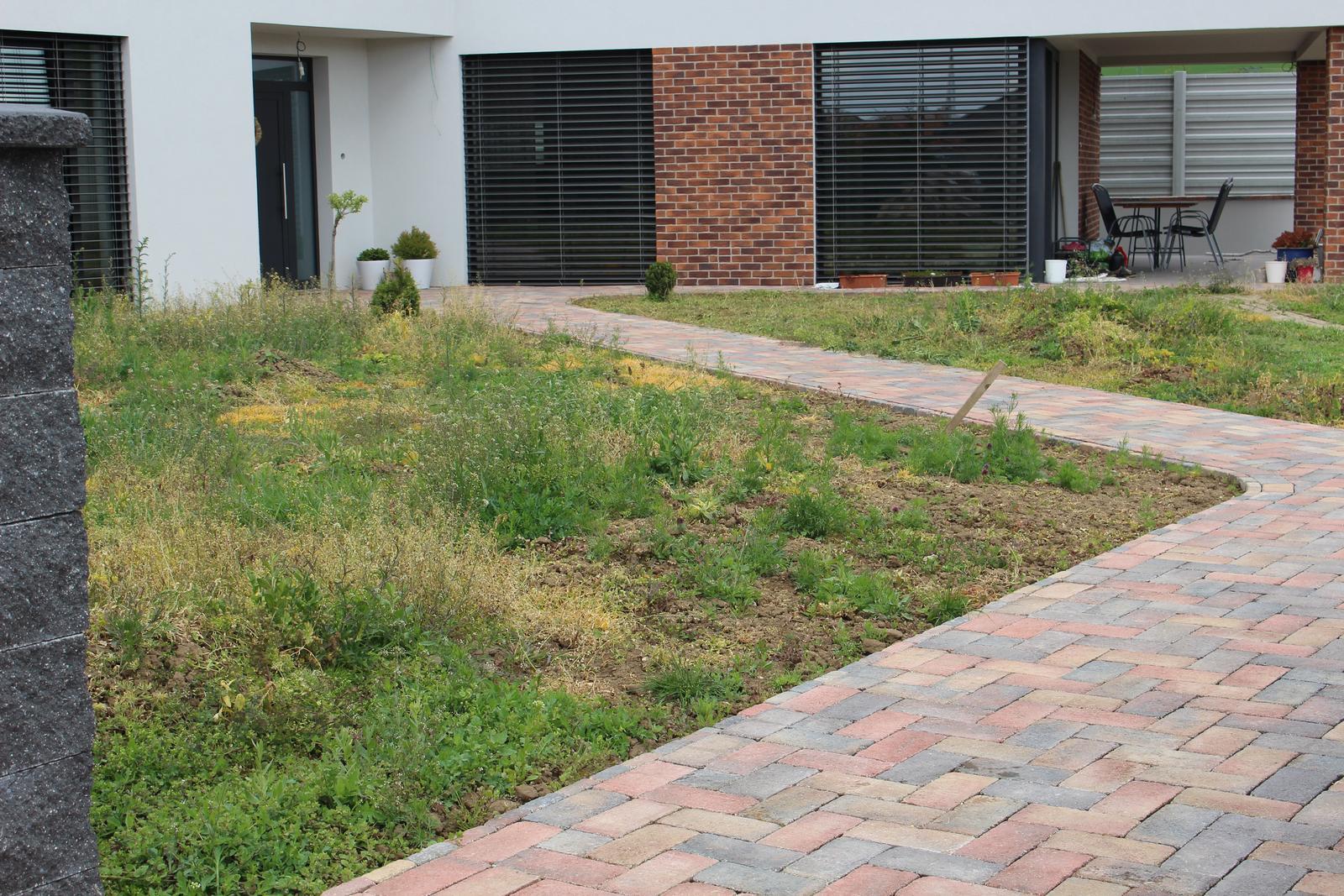 Exteriér - záhrada - Pôvodný stav, máj 2017