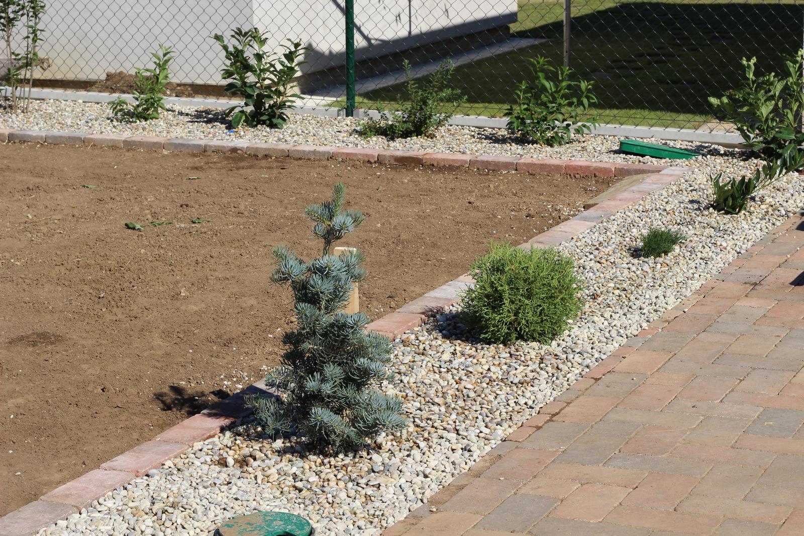 Exteriér - záhrada - Obrázok č. 24