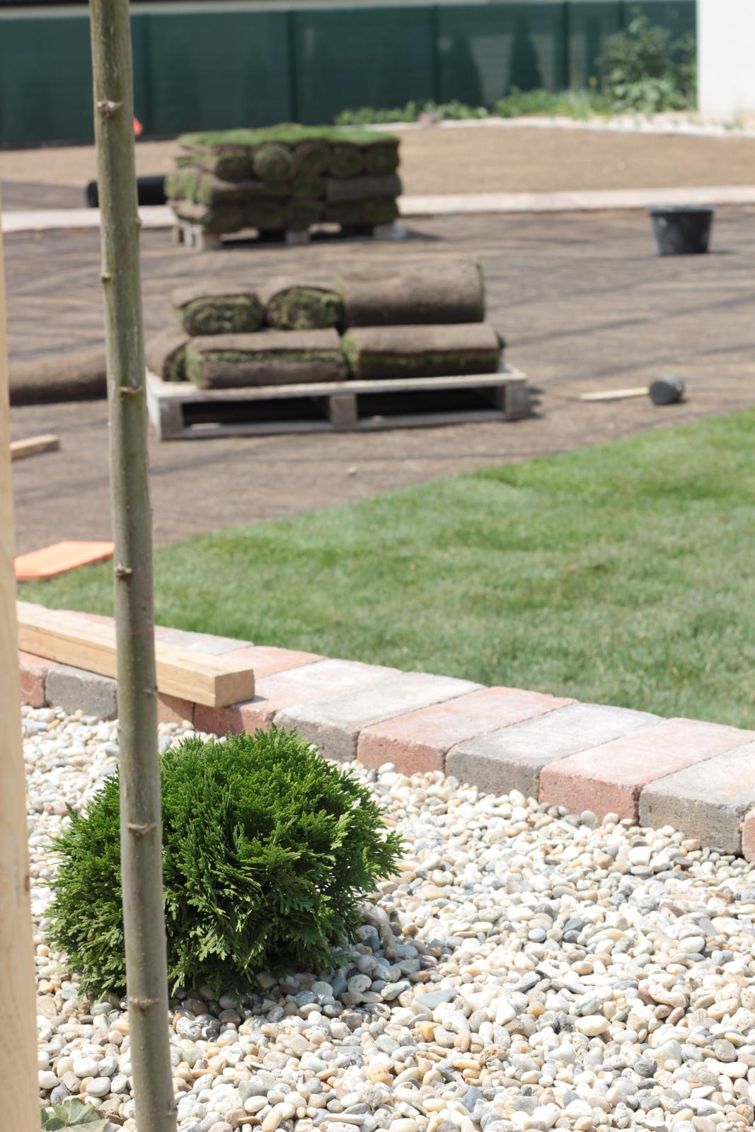 Exteriér - záhrada - Obrázok č. 44