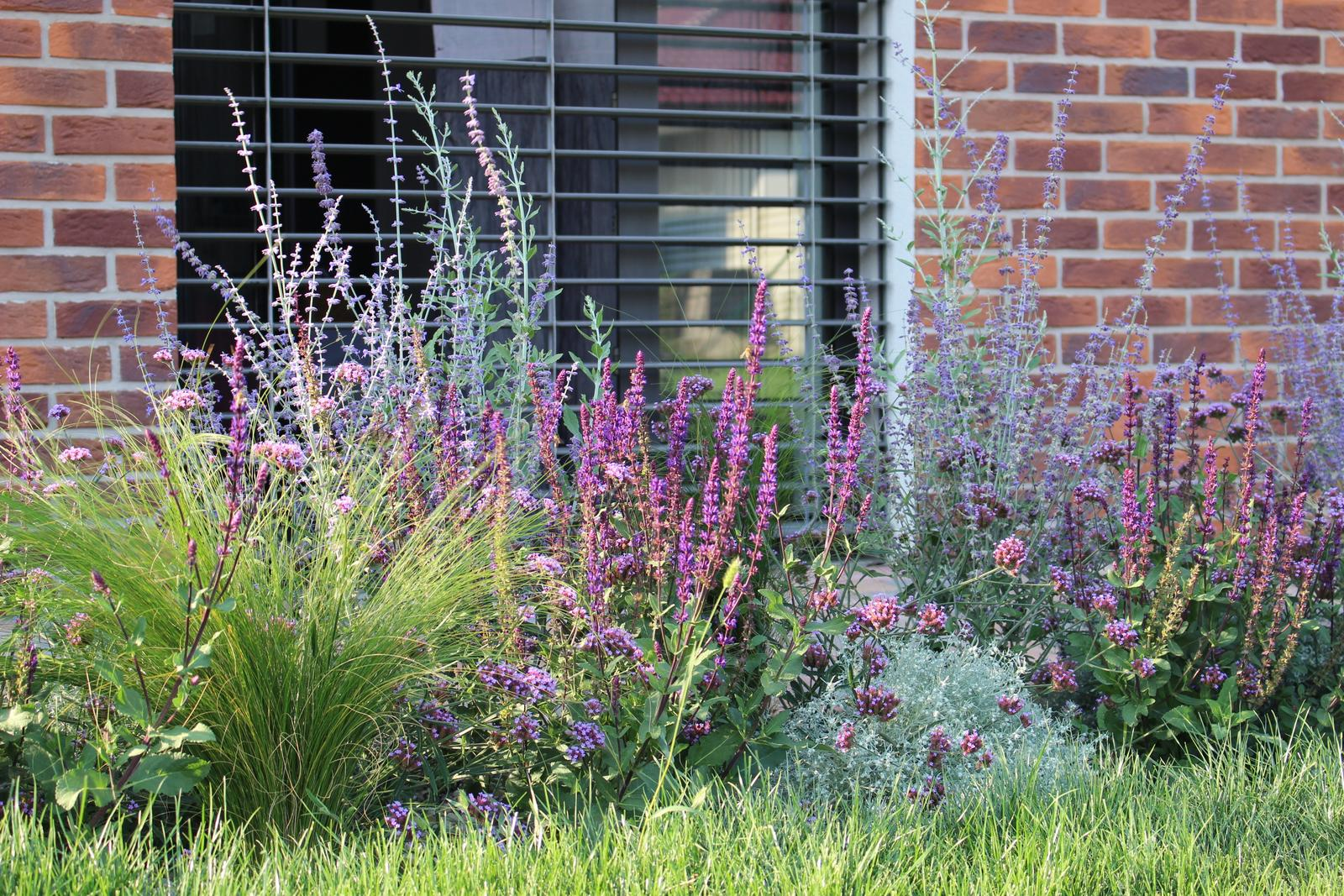 Exteriér - záhrada - Po 2 mesiacoch od výsadby, ľaliovky dávno odkvitli... chcelo by to niečo oranžové, čo kvitne do jesene.