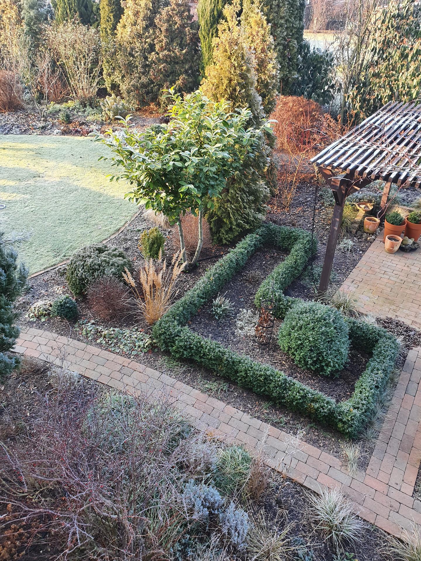 Zahrada ozdobená mrazem - Obrázek č. 1