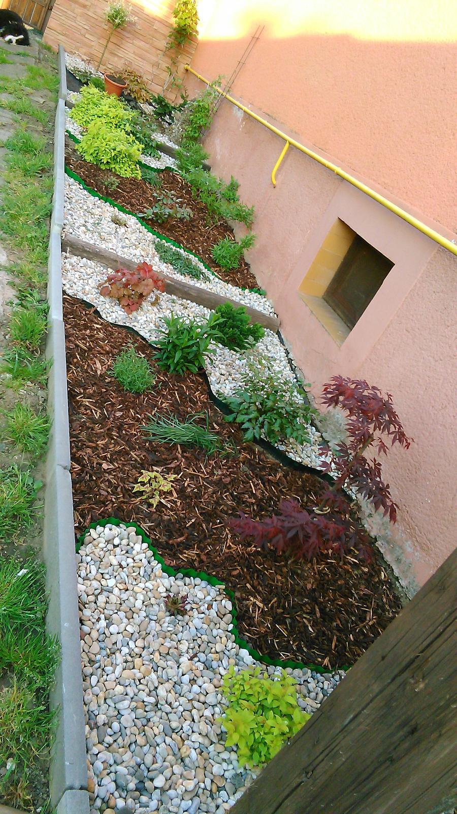 #zahrada  kusok nasej zelene :-) - Obrázok č. 2