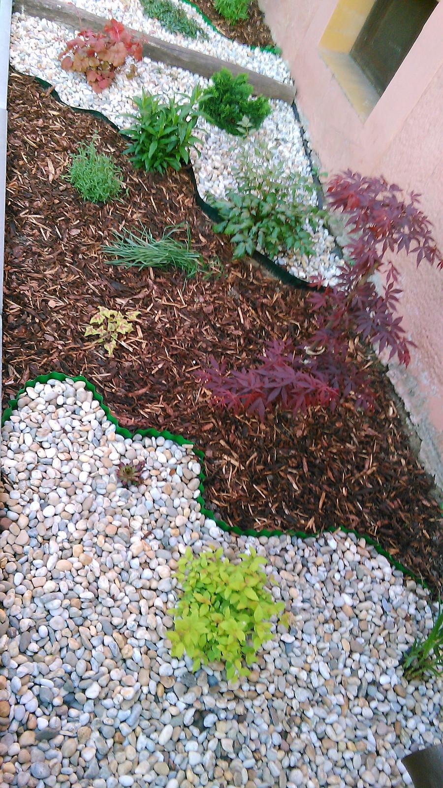 #zahrada  kusok nasej zelene :-) - Obrázok č. 3