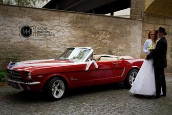 Mustanga - joo, toho bych si mooc přála, ale bohužel konkrétně zapůjčení tohoto by byla dosti výrazná položka v rozpočtu...:(
