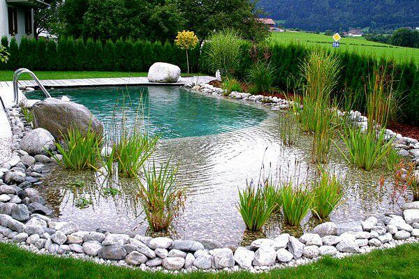Jak bych si představovala náš sen :-) - Nejdřív jsme chtěli jezyrko,  ale bylo by nám lito, kdyby nebyl bazén a navíc by to sebralo moc mista? ! Tak jsme se rozhodly takto. .. Máte někdo? ?
