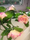 Kvetinova retaz,