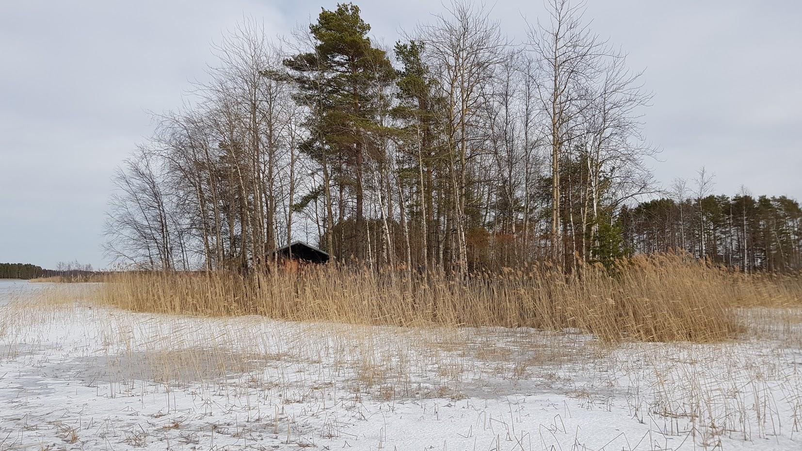 Saarimökki - Obrázek č. 8