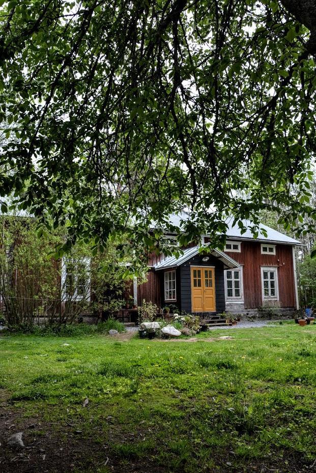 Punainen Talo - Ach ta zeleň.... po dlouhých měsících zimy jsem se konečně dočkala :)