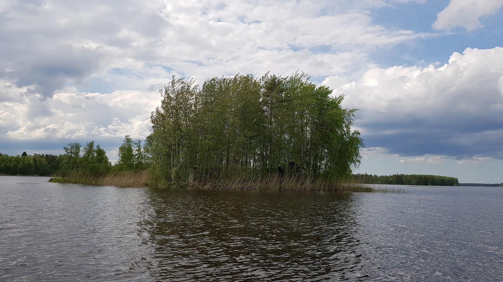 Saarimökki - Obrázek č. 21