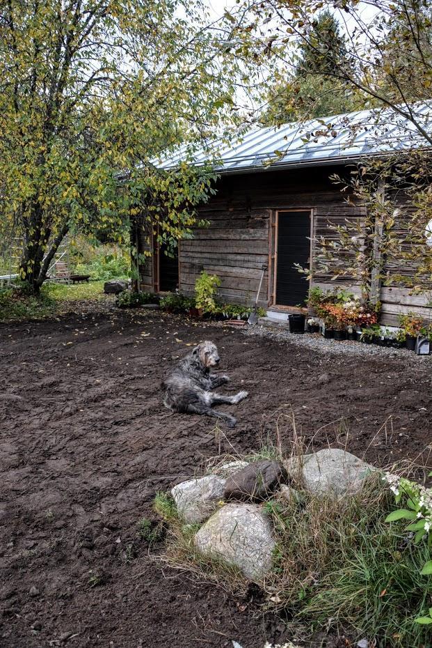 O zahradě - Obrázek č. 12