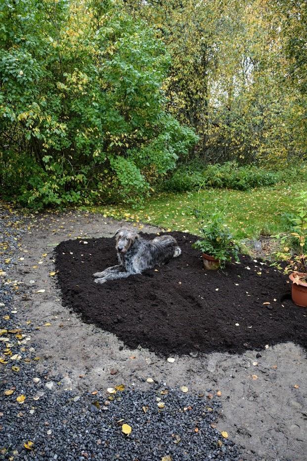 O zahradě - Obrázek č. 20
