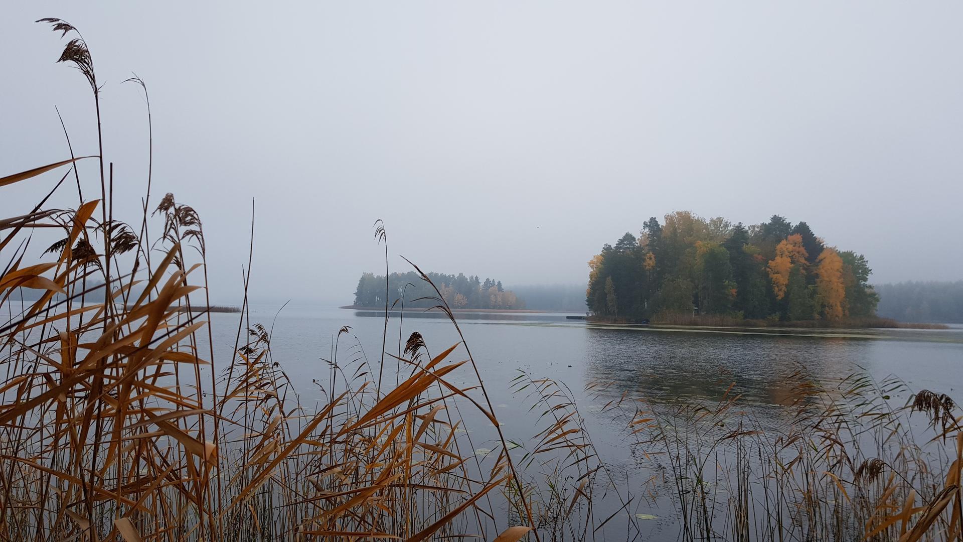 Saarimökki - Obrázek č. 98
